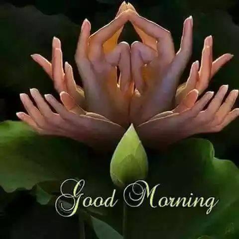 A very nice morning