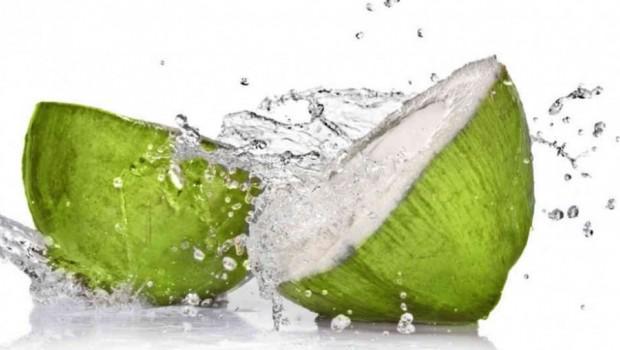Aneka Manfaat Air Kelapa Bagi Kesehatan - AnekaNews.net