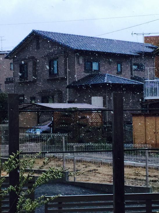 【速報】 大名古屋で雪が降り出した!! 大変です!大名古屋で大雪です!!!
