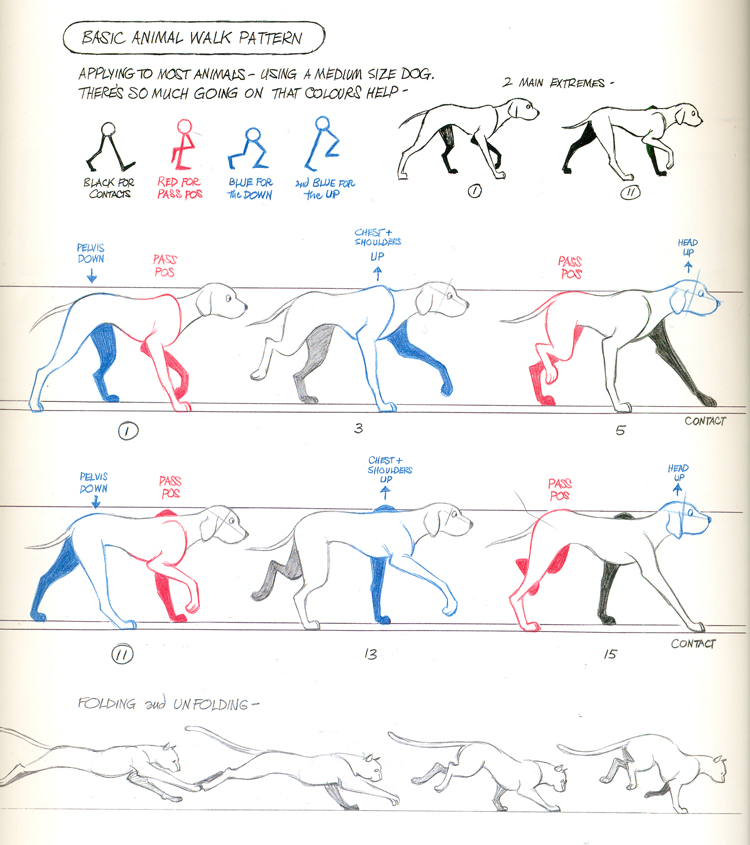 techniques for understanding human walking motion The science of human motion analysis  sought to describe the mechanics of standing, walking  athletes and their coaches use motion analysis techniques in a.