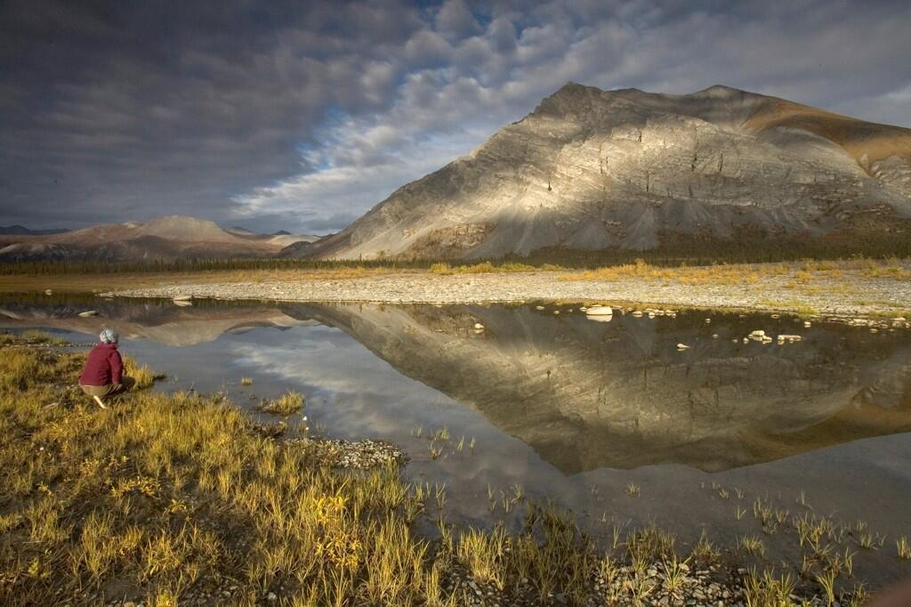 Happy 53rd birthday to the Arctic National Wildlife Refuge! @USFWSHQ @USFWSRefuges #Alaska pic.twitter.com/2popb7EAvz