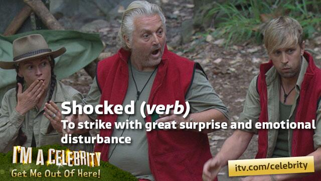 Here we refer to the @JoeyEssex_ jungle dictionary... http://t.co/mvKkVonRh6 #imacelebrity #shocked http://t.co/ctudgjXnaY