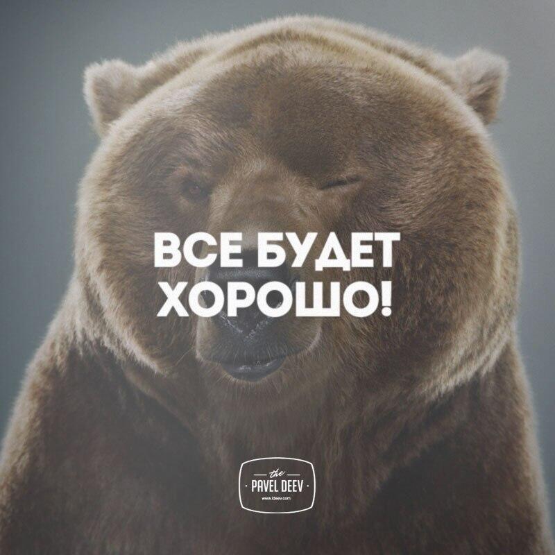 Медведь все будет хорошо картинка с надписью
