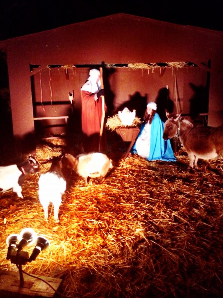 RT @marcsorrentino: Spent the night at a Christmas nativity drive through. The real reason for Christmas. http://t.co/2IYitrSrtH