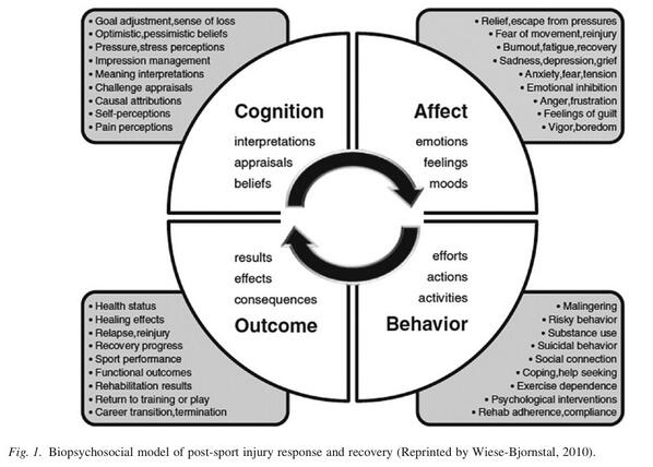 Annemieke griffin on twitter the psychology of return to sport annemieke griffin on twitter the psychology of return to sport biopsychosocial model of post sport injury response and recovery httptlopbnctezi ccuart Gallery