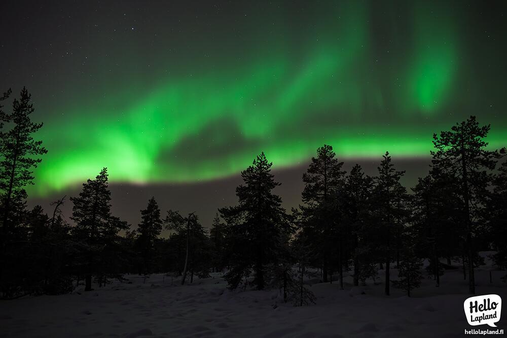 aurora borealis, hello lapland, Lapland, Finland, Northern lights