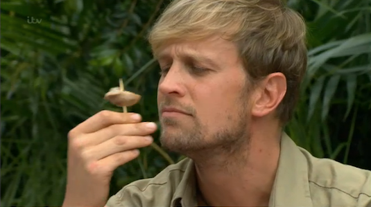 I *really* hope you are not eating your dinner watching this... #TeamKian #imacelebrity http://t.co/WSDFqVStYh