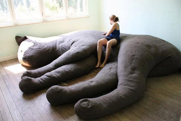 """Canapé Géant topito on twitter: """"un canapé géant en forme de chat, ça vous dirait"""