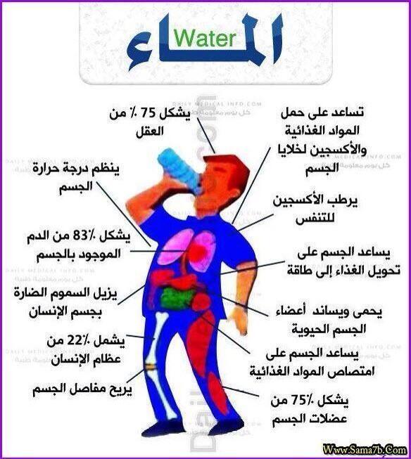 ام الشوشه المنفوشه on Twitter