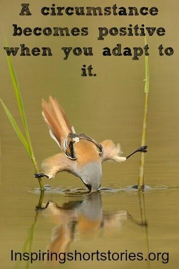A circumstance becomes positive when you adopt to it. http://t.co/q2WvBPN82z