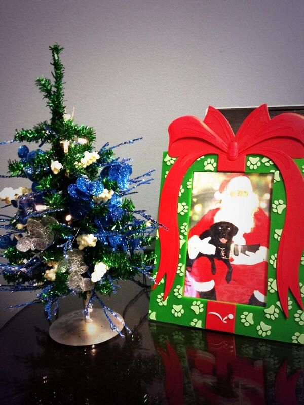 What office would be complete without a Santa & puppy picture next to their Blue Raider Tree?  #LWCTrees http://t.co/AEsQT0ixeb