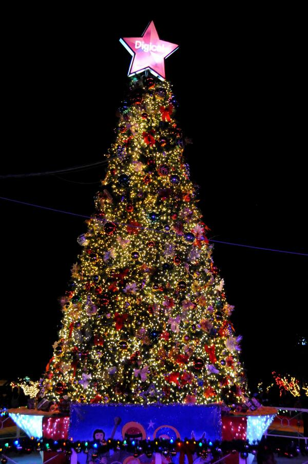 jamaica gleaner on twitter photo the christmas tree which was lit at st william grant park last week at ksacs annual tree lighting ceremony