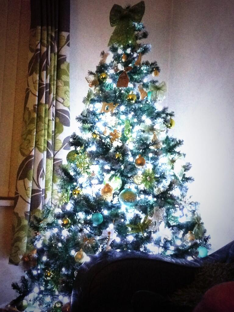 RT @Chelsey_Adele: @CherLloyd but cher look how pretty my christmas tree is 🎄🎅🎁 http://t.co/JpOCc5rlcN