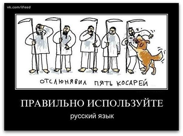 Приколы про русский язык картинки