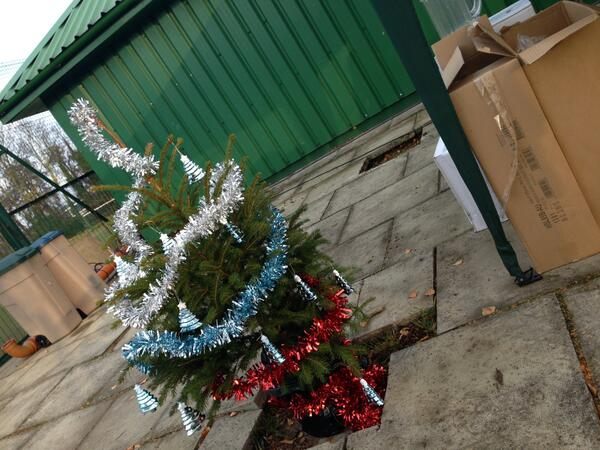 It's nice to make an effort at Christmas x vb http://t.co/ZuQKiYr2mr