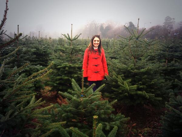 "Laura Tobin On Twitter: ""Had A Lovely Morning At A"