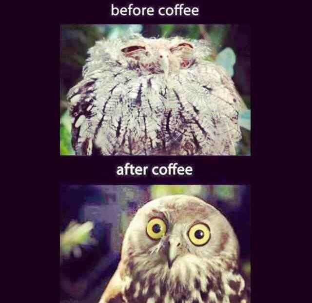 This is me every morning 😂😂😂 haha #getmeacoffee http://t.co/HHSi1ZEKSc
