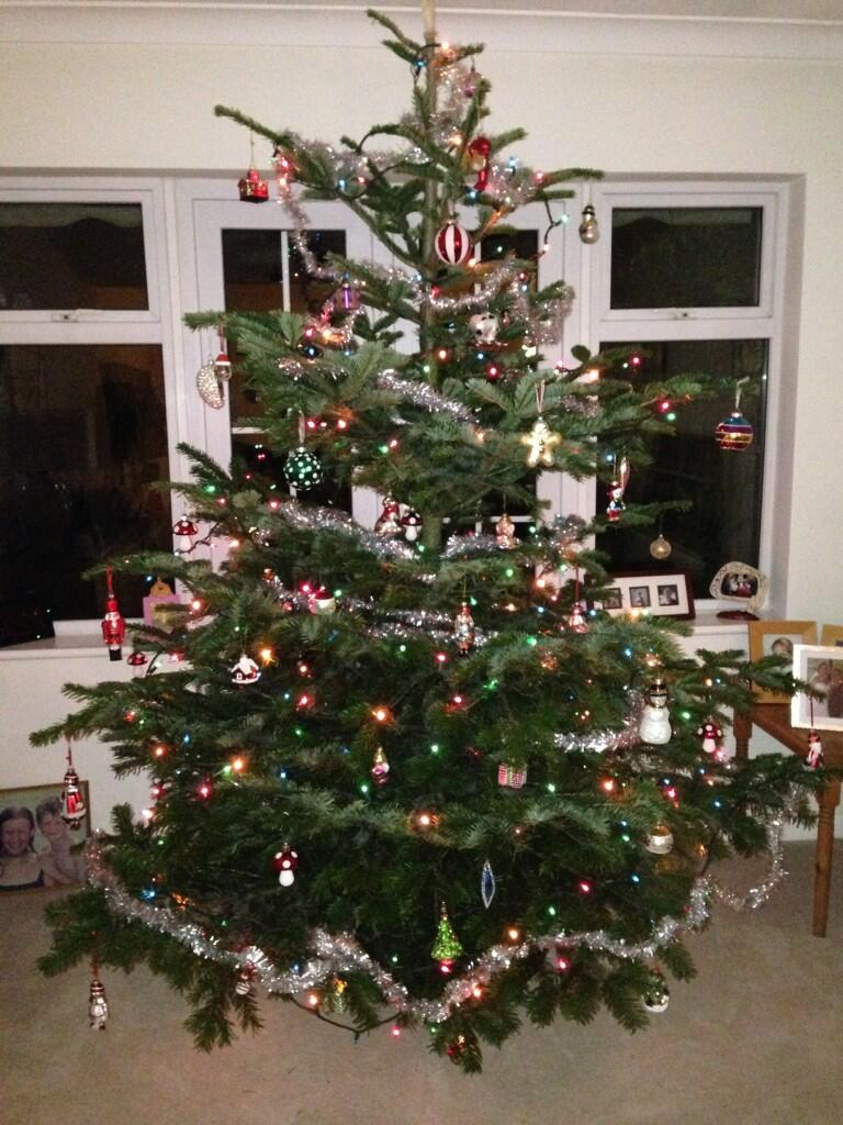 RT @ClaireStone52: @KirstieMAllsopp it maybe a bit garish but we love our tree! #badtastetree http://t.co/uJLt9UBnpw