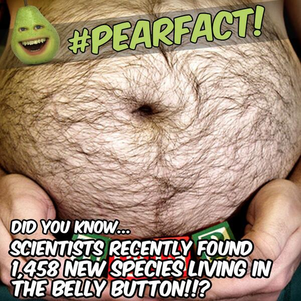 #PearFact: Did you know that scientists found 1,458 new species of bacteria living in the belly button!? YIKES! http://t.co/T1xsc94CgO