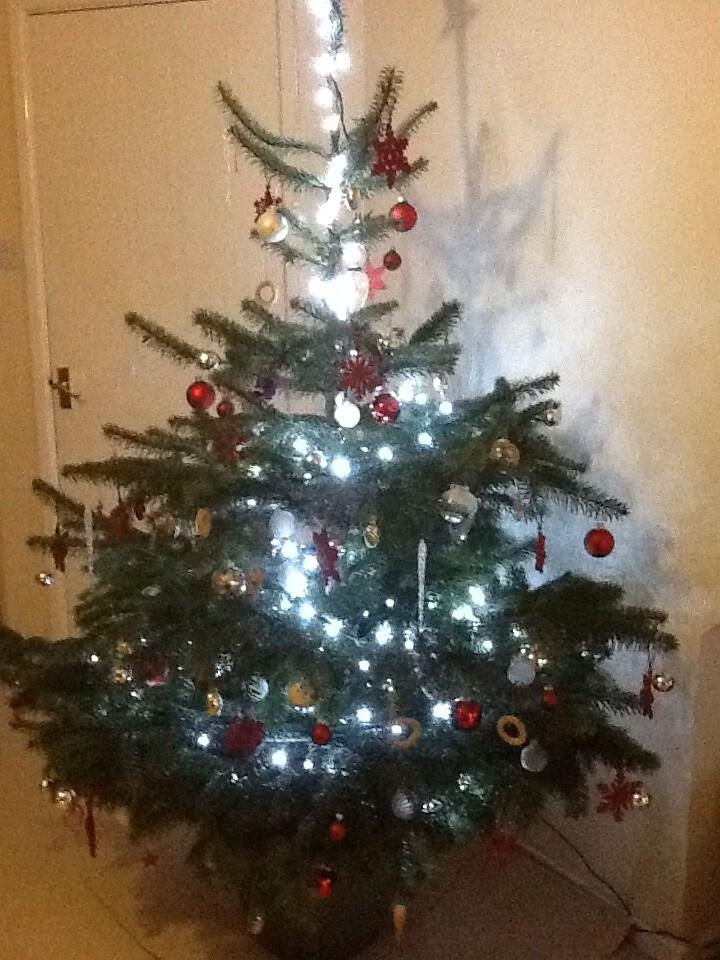 RT @RenateGoode: Thought I'd join in with the tree pictures @KirstieMAllsopp http://t.co/KAIJZbrkt0