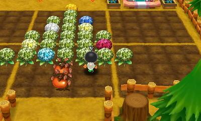 【電波人間のクリスマス:17】100coin1upさんの畑