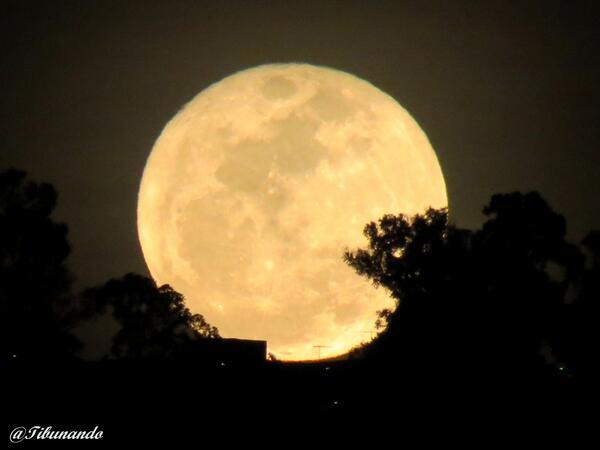 POEMAS SIDERALES ( Sol, Luna, Estrellas, Tierra, Naturaleza, Galaxias...) - Página 24 BbvBAneCMAAV27e