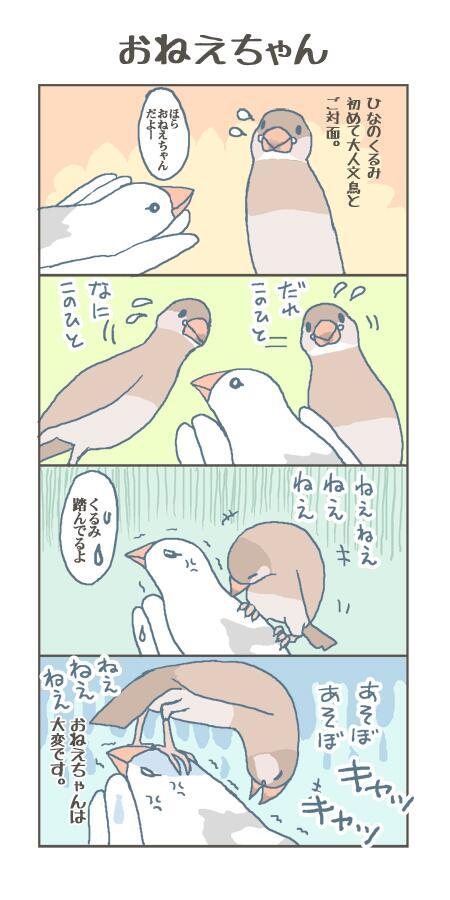 """文/ 新木南生 on Twitter: """"喧嘩..."""