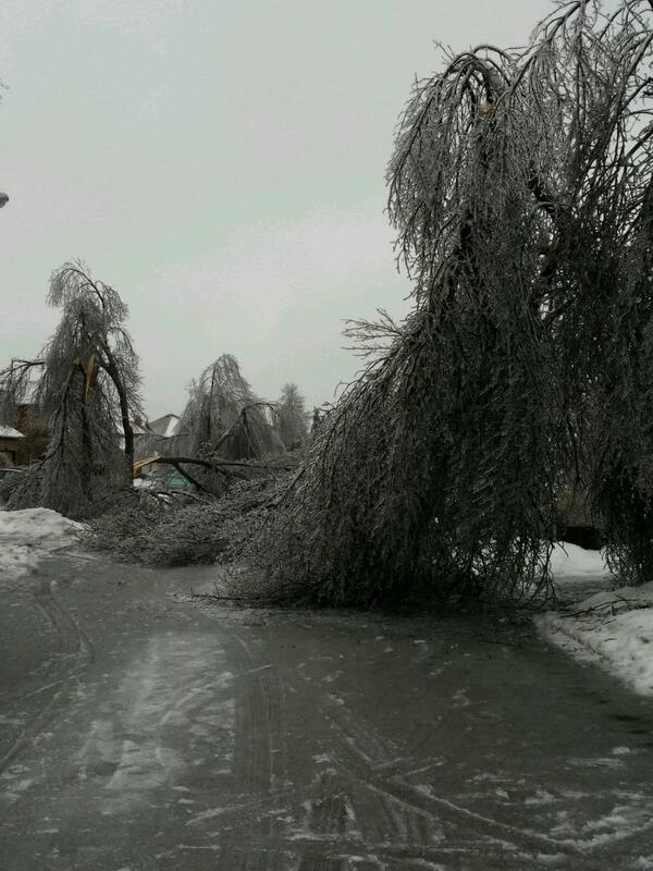 RT @Rm3390: @Mississauga411 @CityNatasha @Brampton411 daytime pics of #icestorm2013 http://t.co/2KTCou0Kbv #citystorm