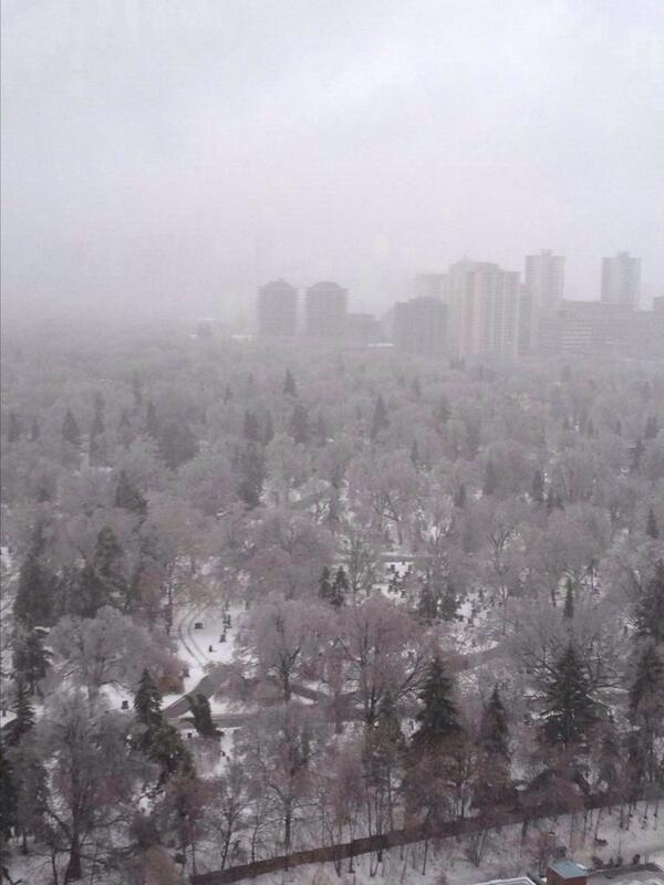Very icy scene this AM in Toronto. Wow. RT @TaraKr: Mid-town Toronto.   #onstorm #icestorm2013 http://t.co/6mmbep2syc