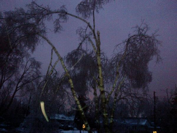 Trees have been decimated. #TorontoIceStorm #darkTO http://t.co/1ln4nbJpO0
