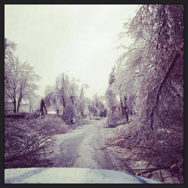 Not many moments in life are pretty and destructive at the same time, #icestorm2013 (see Brampton via @DonatucciM) http://t.co/p0Q513S4Xa