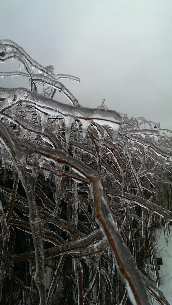 Encased in ice #icestorm2013 #Ajax #icestorm24 #starweather will it ever melt? http://t.co/j6QW0nzkHI