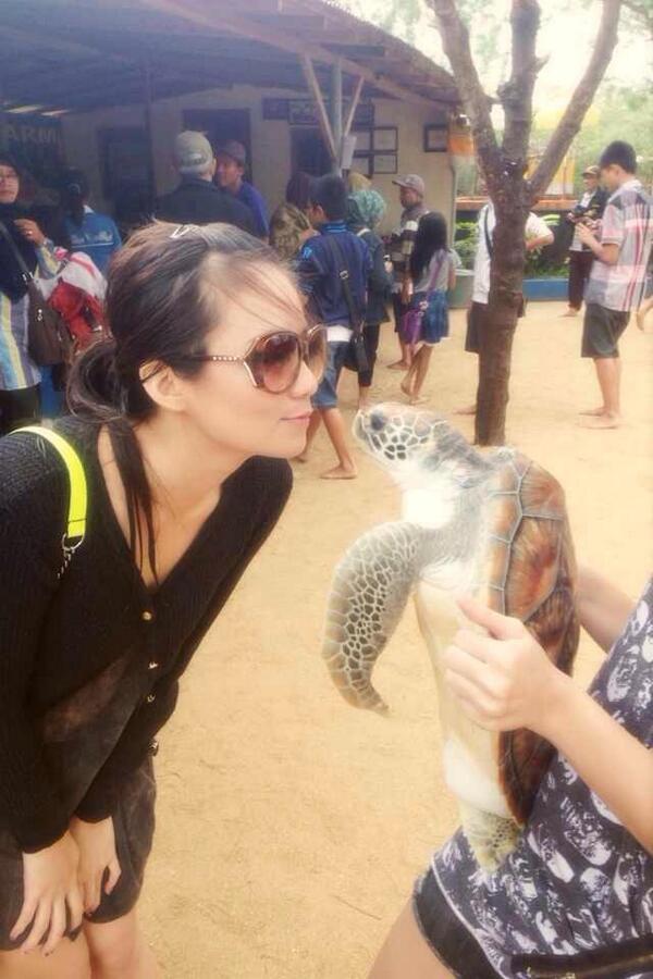 [FOTO] Stella Cornelia ex-JKT48 Cium Penyu di Pulau Penyu Bali BcO9TxcCUAATmwH