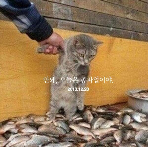 #총파업 #포스터 by @jinhwon http://t.co/sZKIC4NsC6