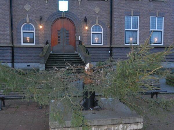 Grote kerstboom in Schipluiden gestolen