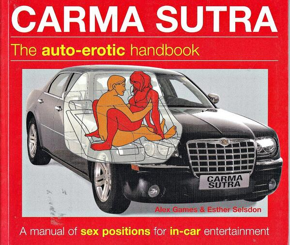 Sex Positions For The Car 1