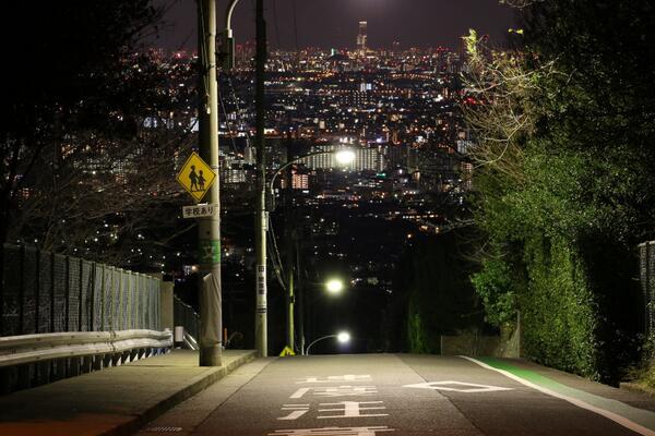 一眼買ったら絶対行きたかった西宮北高前からの夜景 pic.twitter.com/nz7yWcX29f
