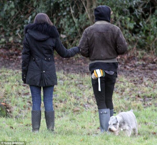 Zayn Walking Dogs