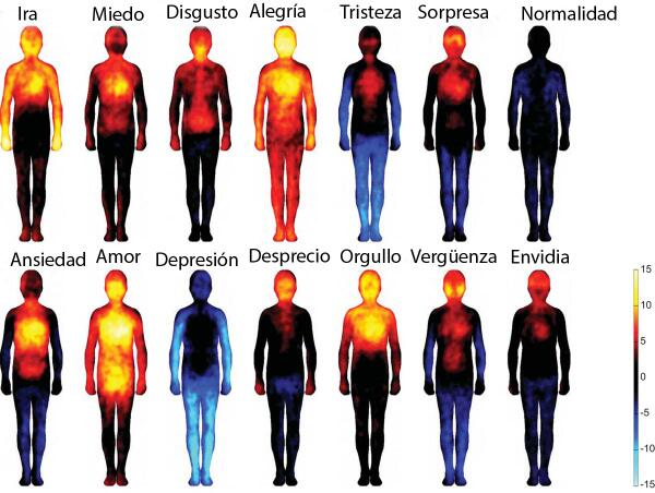 Así reacciona el cuerpo con las emociones http://t.co/muBlOSpZIX http://t.co/NqA2rVPSrV