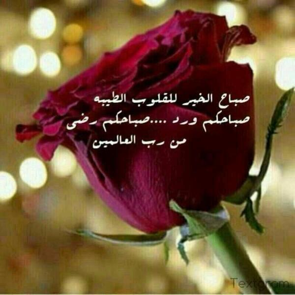 استغفرالله On Twitter صباح الخير Http T Co 1fbafoc2wd