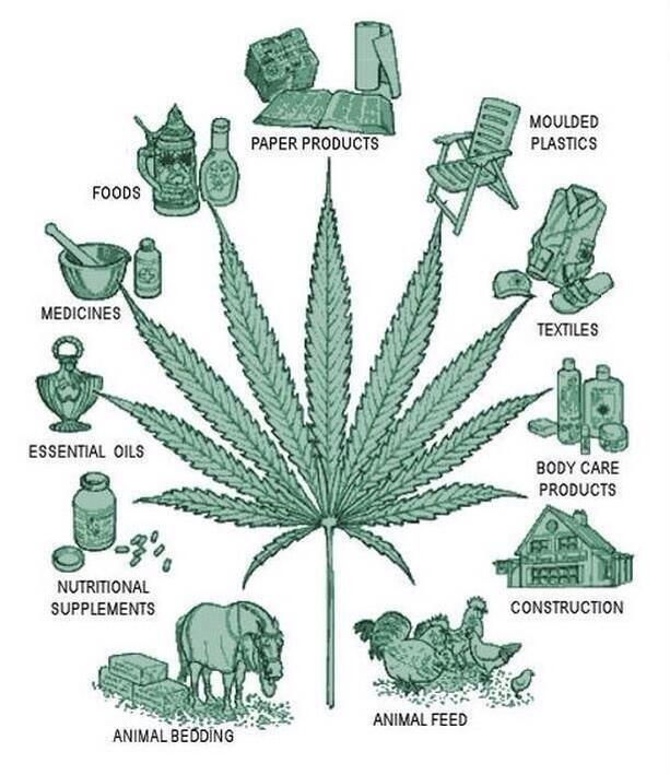 Legalizing is not just about smoking, hemp is the future. Saves the environment and meets our industrial needs http://t.co/DW65SqxzvZ