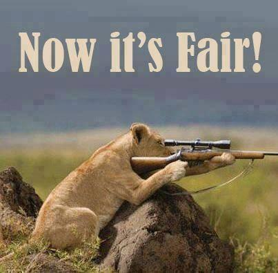 @NickyAACampbell thought you might like this  #hunting http://t.co/Fl3kchHTNI