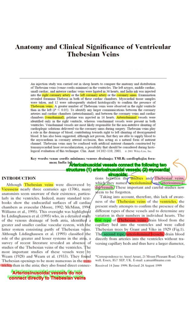 Anatomy Thebesian veins histology