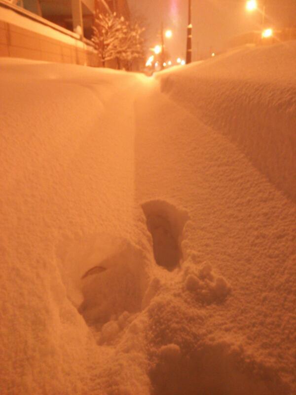 一般的な北海道の雪道 http://t.co/YV640sYtm4