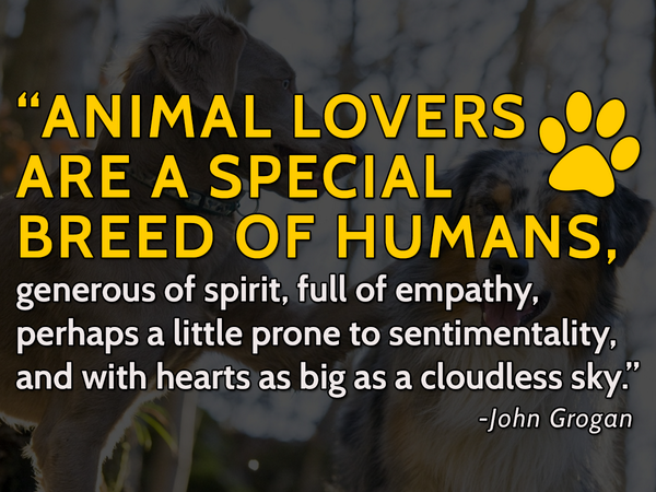 """Animal lovers are a special breed of humans, generous of spirit, full of empathy... #animals #quotes http://t.co/YIxLc3Dxb9"