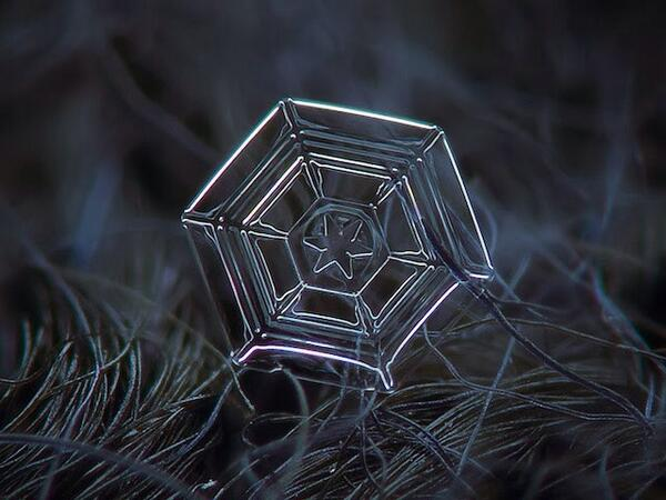 Amazing macro-photography of individual snowflakes by photographer Alexey Kljatov http://t.co/mdWdx7Z6od #natureart http://t.co/QR0vqKzHcc