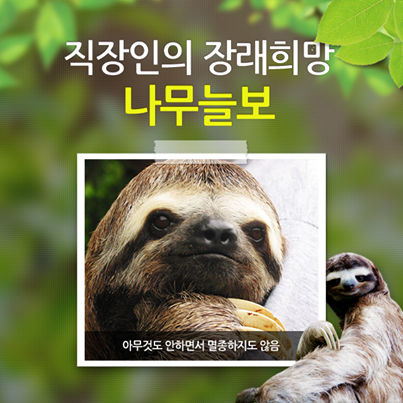 직장인이 가장 되고 싶은 동물 1위  [나무늘보: 아무것도 하지 않는데, 멸종하지도 않는다] http://t.co/3nfA4FaDWt