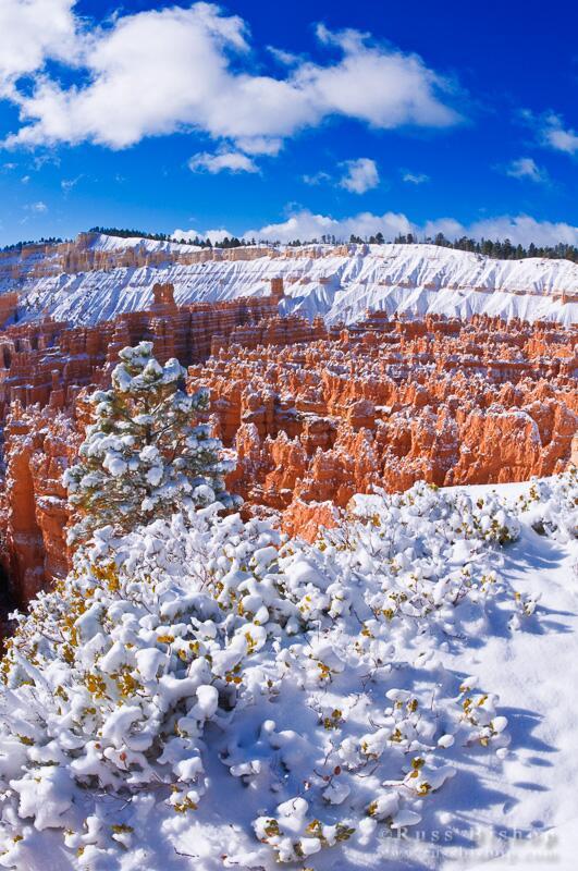 Fresh powder on the Silent City, Bryce Canyon NP, Utah Hi-res: http://t.co/CEDusAQVBL #winterwednesday #utah #bryce http://t.co/78xrPsOfQD