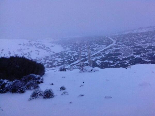 NIEVEEE! RT @CECOPAL_Orotava Imagen de Las Cañadas del Teide #LaOrotava #TENERIFE http://t.co/VcNm8Bcfpn #meteotenerife