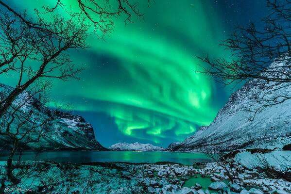#Aurora photo by Harald Albrigsten Jan 9, Kvaløya, Norway http://t.co/dmWVX5ayga http://t.co/zdLSkLcyaz via @ObservingSpace #StargazingLIVE
